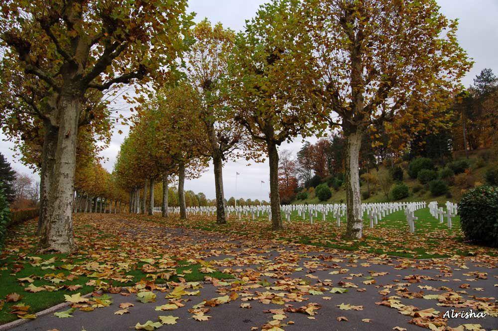 """A Belleau (02), des centaines de tombes de soldats morts au cours de la Guerre 14-18 Mémorial, musée et immense """"Bois Belleau"""" attenant où ont eu lieu les affrontements"""