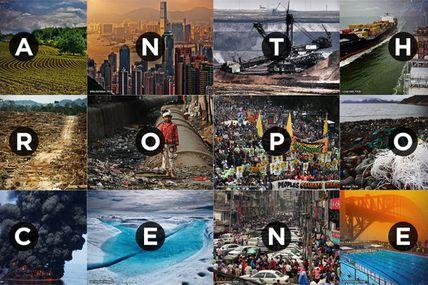 L'anthropocène en excès de vitesse, l'adaptation elle n'a pas le temps de suivre ce rythme, ni le climat, ni la biodiversité.