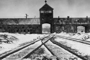 Medical experiments in Auschwitz