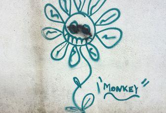 Street Art - Tourcoing