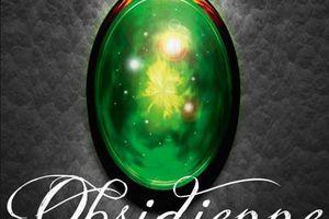 Lux tome 1 : Obsidienne de Jennifer L. ARMENTROUT