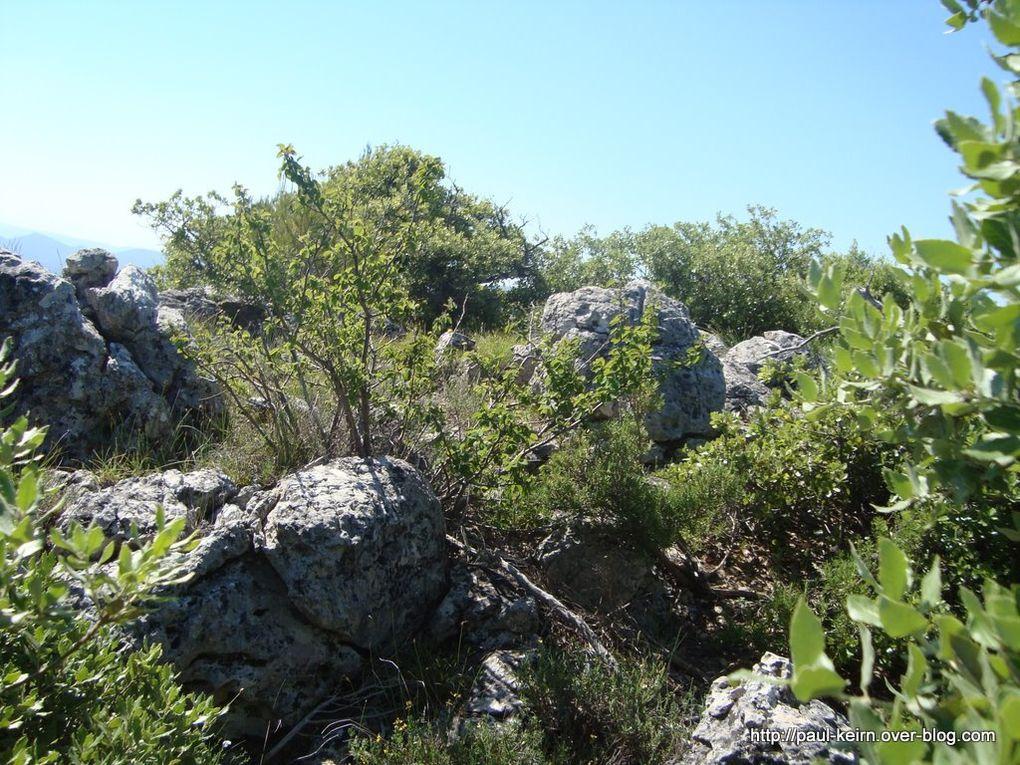Montée puis descente à mi-hauteur, pour une exploration à pied de la zone karstique (ruiniforme), fruit d'une longue érosion calcaire. Enfin descente sur La Roquebrussanne