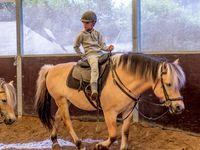 Stage Théatre Equestre Voltige Wattrelos 11-13/07/2017