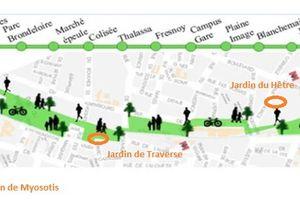 Roubaix : Voix Citoyennes pour une Voie Verte