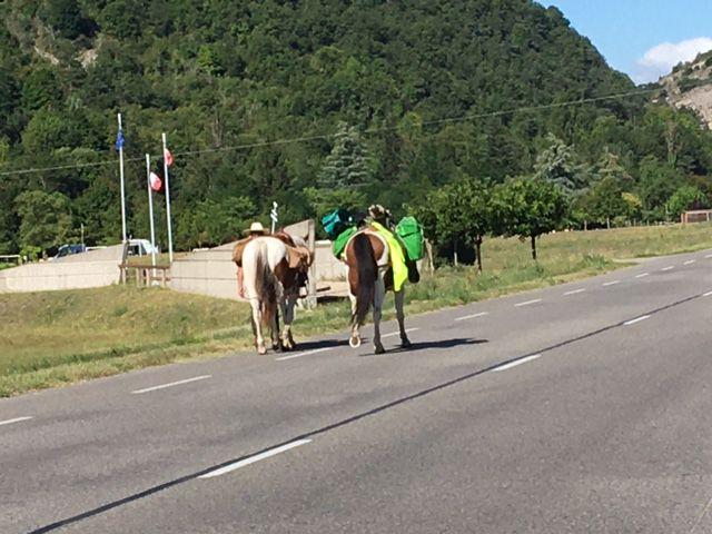 """""""Convoi"""" insolite sur la route, entre Saillans et  Pont d'Espenel. Un randonneur avec ses deux chevaux."""