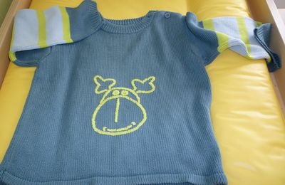 Le pull d'Emy