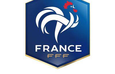 #eSport : la FFF fait appel à la World Gaming Federation et Playce afin de déployer des sites de compétition eSport pour ses 13 ligues et ses 90 districts