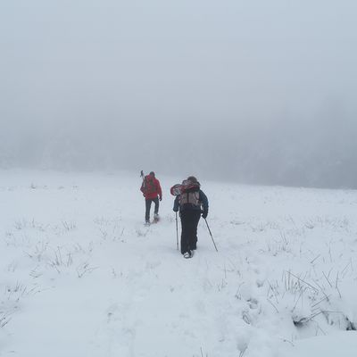 Sortie raquettes Wascalade - Hengst (890m)- 02/01/2021