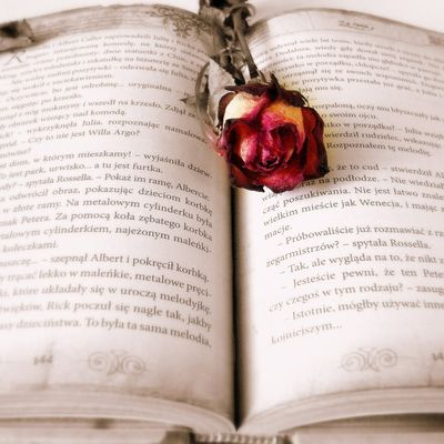Love spells to work fast +27784944478
