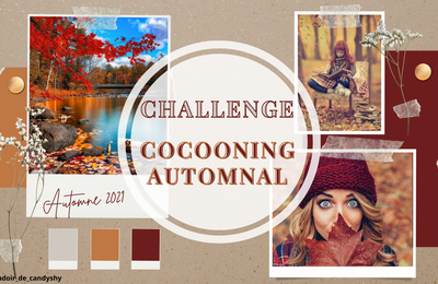 Challenge COCOONING AUTOMNAL #4 (édition 2021)