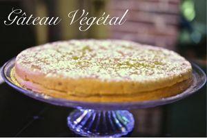 Le gâteau Végétal, le nouveau magic cake...