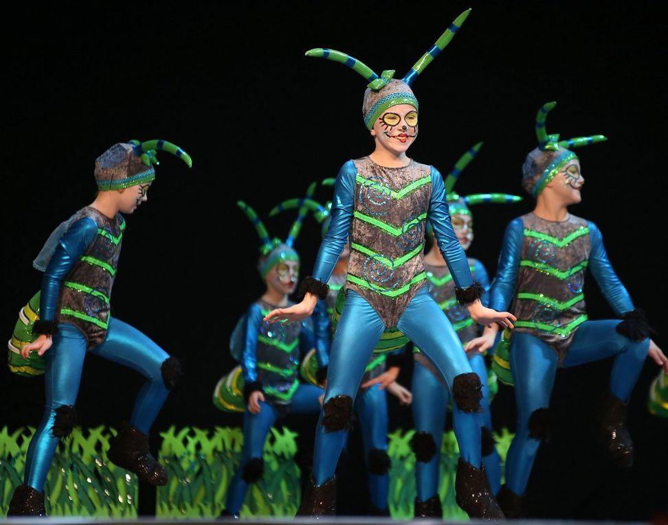 Unterhaltung vom Feinsten bei den 25. Süddeutschen Meisterschaften in der s.Oliver-Halle: Karnevalistischer Tanzsport begeistert, boomt und motiviert (Bernhard Schlereth)