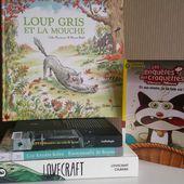 Mes idées de lecture - Chapitre 2 - Blog Littéraire : livres, culture, écriture, lifestyle - Que Lire ?