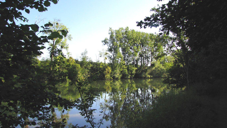 les étangs du Carandeau