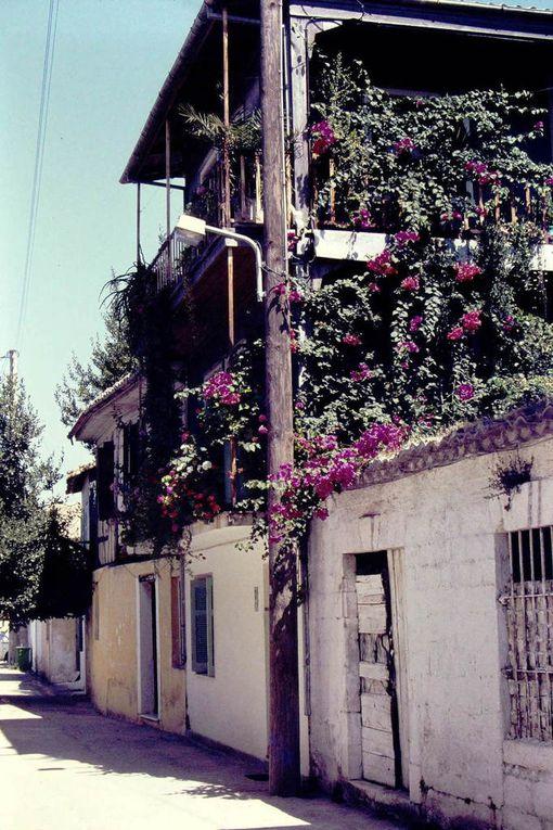 D'abord Leucade et ses maisons bien différentes de celles des Cyclades ( 4 premières dias ), puis Sérifos et Syros plus peuplée. La dernière dia, c'est Kyparissia, et les trois précédentes, Astypalea. Laquelle est la plus attirante ?