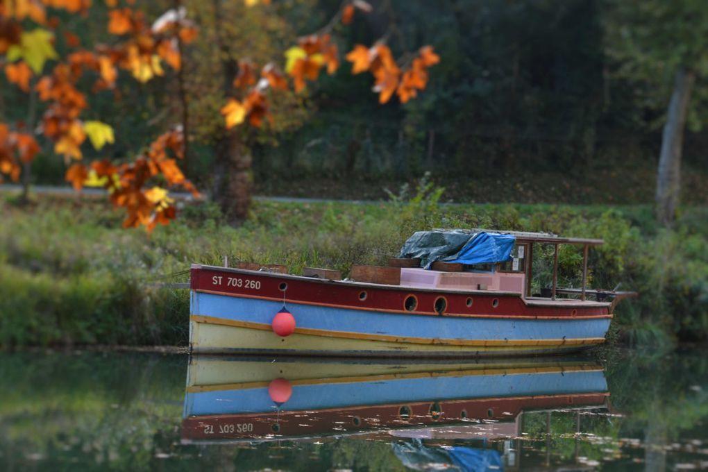 Reflets d'automne de Laurent SORBE. Les inondations laissent malgré tout de belles traces...