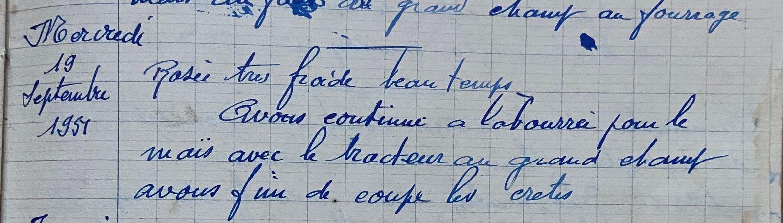 Mercredi 19 septembre 1951- les crêtes de maïs