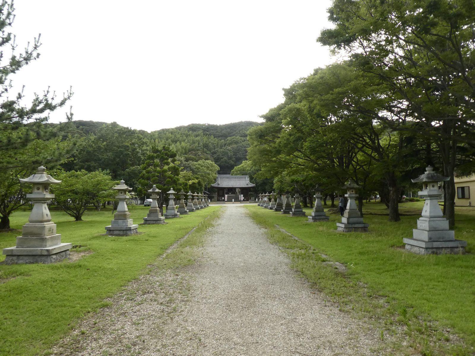 Préf. de Hyôgo : île d'Awaji : Hanasajiki l'été