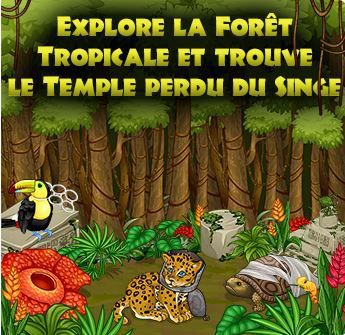 La forêt tropical!!
