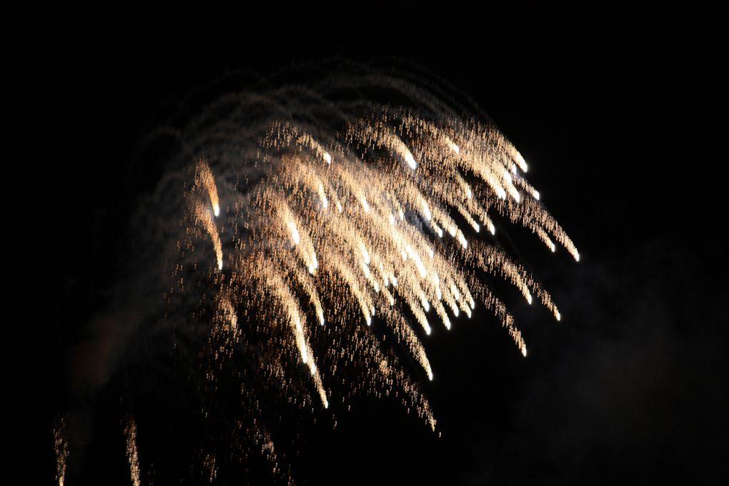 Illuminations: Le Feu d'artifice du 14 juillet de Paris 2011. Photos: Emmanuel CRIVAT
