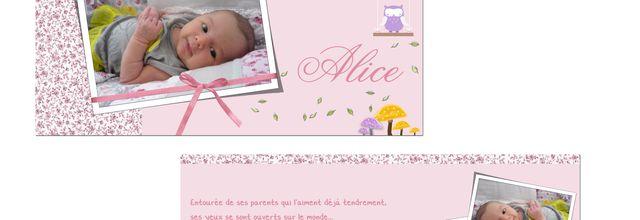Alice ... la petite Merveille ....