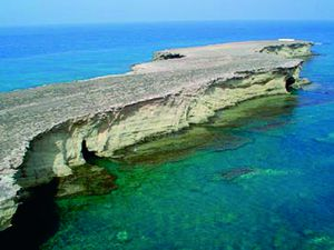 Alboran - Los Acantilados, caves formed in the coastal cliffs of the island - Photo: A. J. Oña