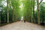 Le château de Chenonceau en images (1ère partie)