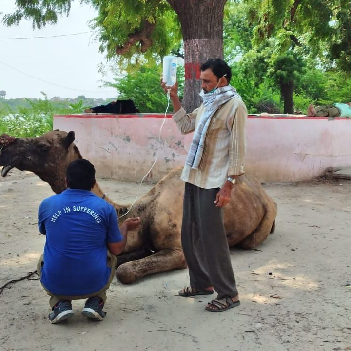 Help in Suffering- Jaipur, Rajasthan-India
