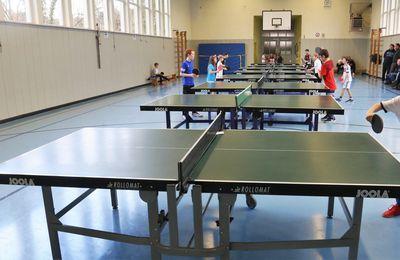 Aufstellung über den Sportbetrieb in den 16 Abteilungen der Turngemeinde Veitshöchheim ab 15. Juni