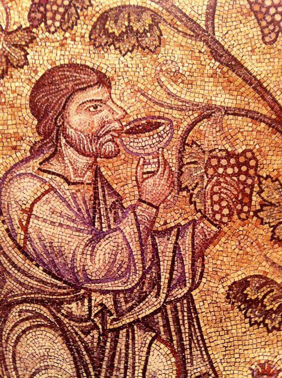 NOE et le Vin, l'Arche, la Tour de Babel.