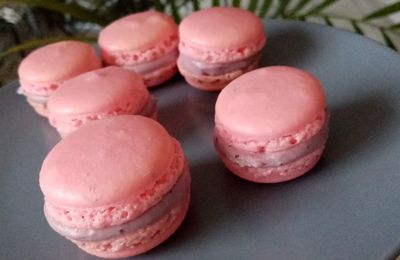 Macarons aux fruits rouges au companion