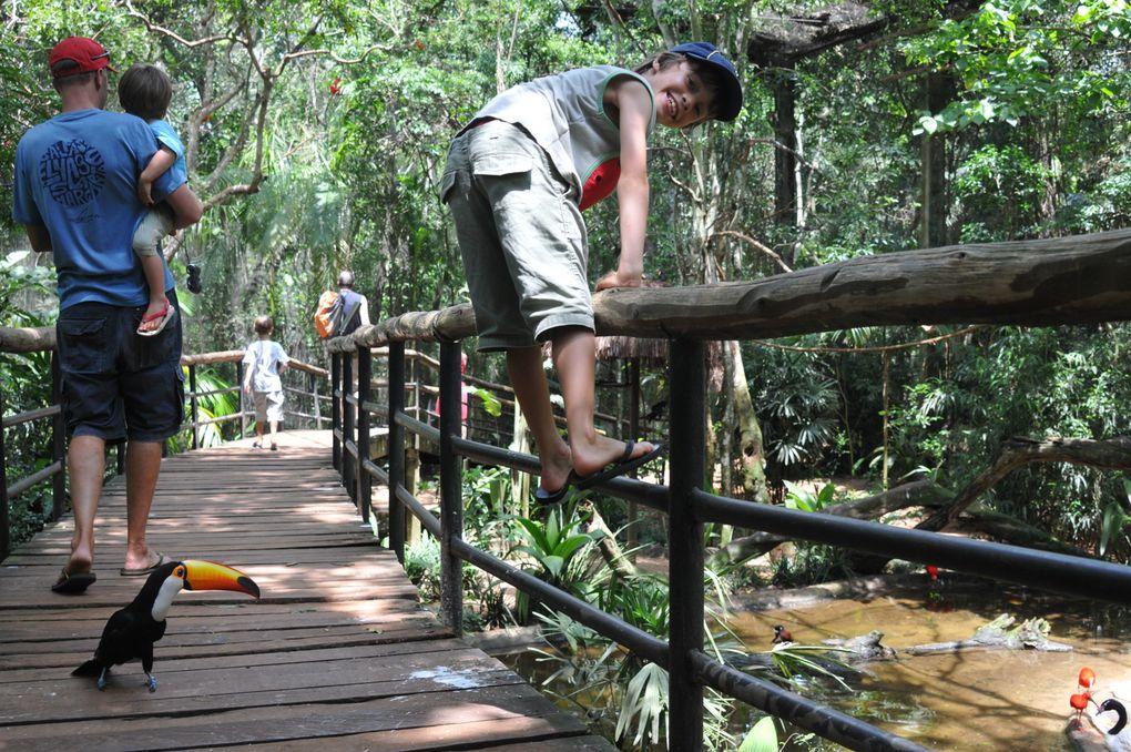"""Des chutes d'Iguazu à Florianopolis, rencontres et paysages ont ponctué nos """"vacances de la Toussaint"""""""