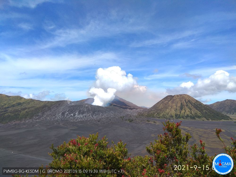 Bromo - gas and steam plume 09.15.2021 / 09:19 AM WIB - PVMBG-Magma Indonesia webcam