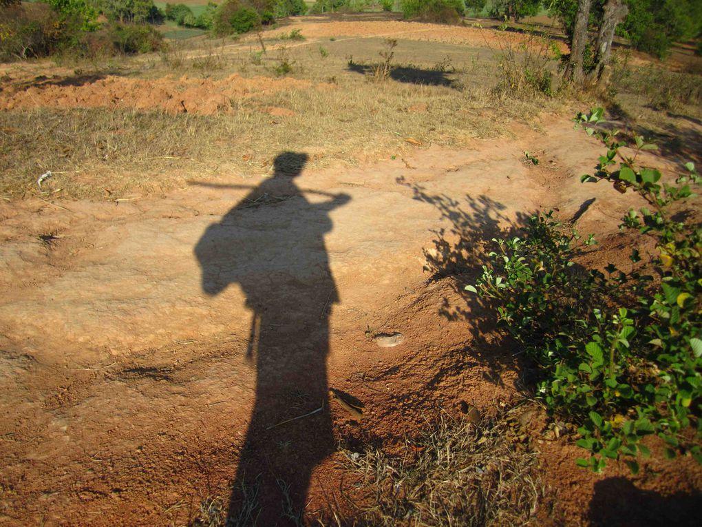 Album - myanmar-1- 2014
