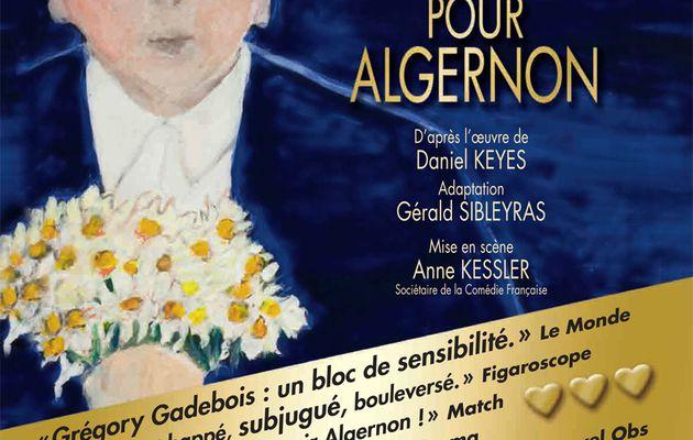 Des Fleurs pour Algernon reprend le 07/02 au Théâtre Hébertot, courez-y !