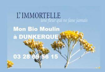 Huile Essentielle Immortelle - Mon Bio Moulin à Dunkerque