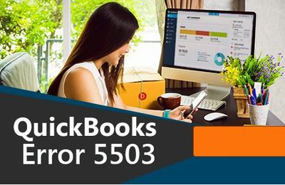 QuickBooks Error Code 5503