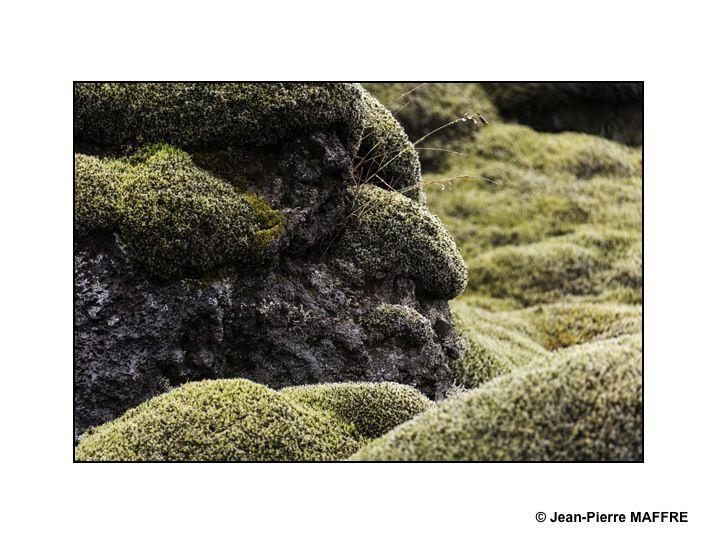 """L'Eldhraun, qui se traduit en français par désert de lave du feu, est une coulée de lave d'Islande qui s""""est formée au cours de l'éruption du Laki en 1783."""