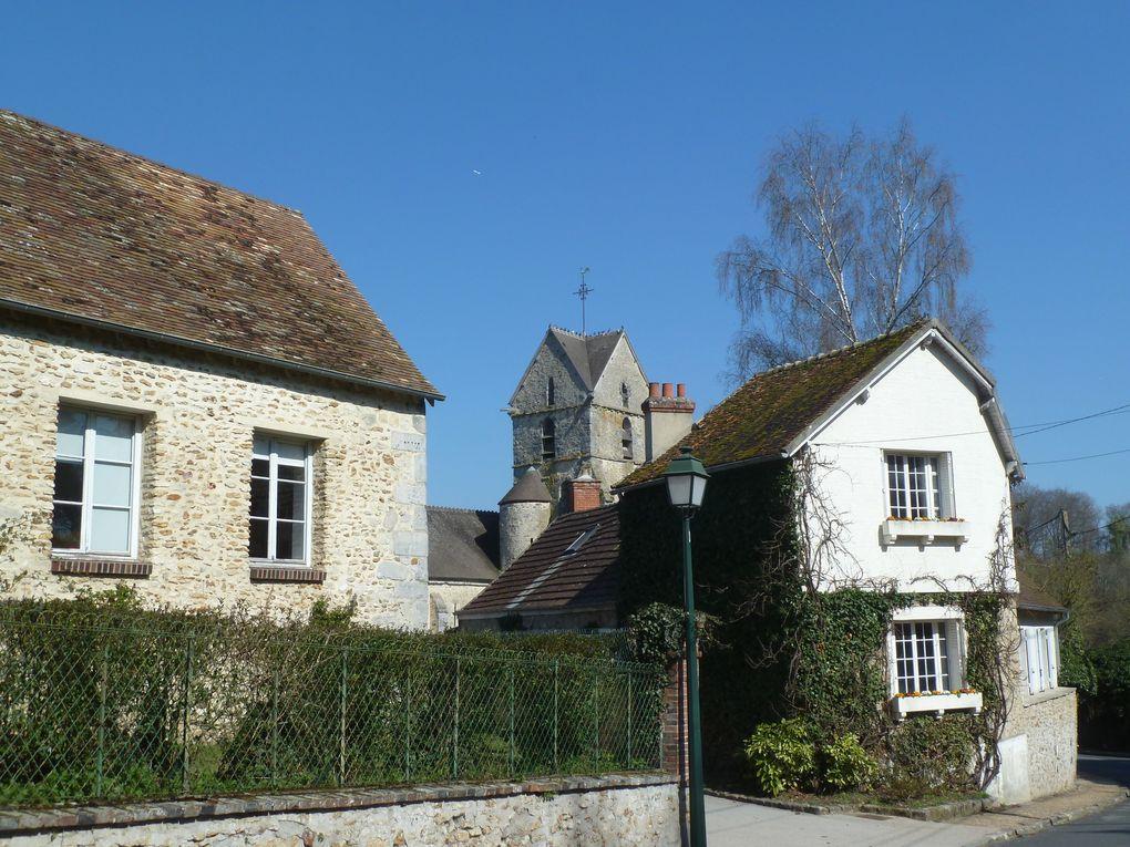 Randonnée en boucle à Rambouillet - 21 km.