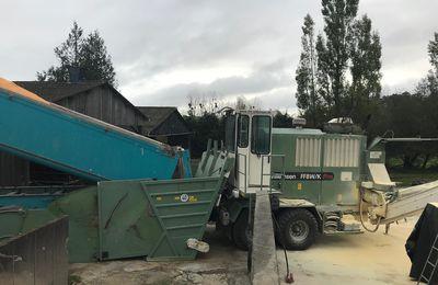 Broyage maïs grain