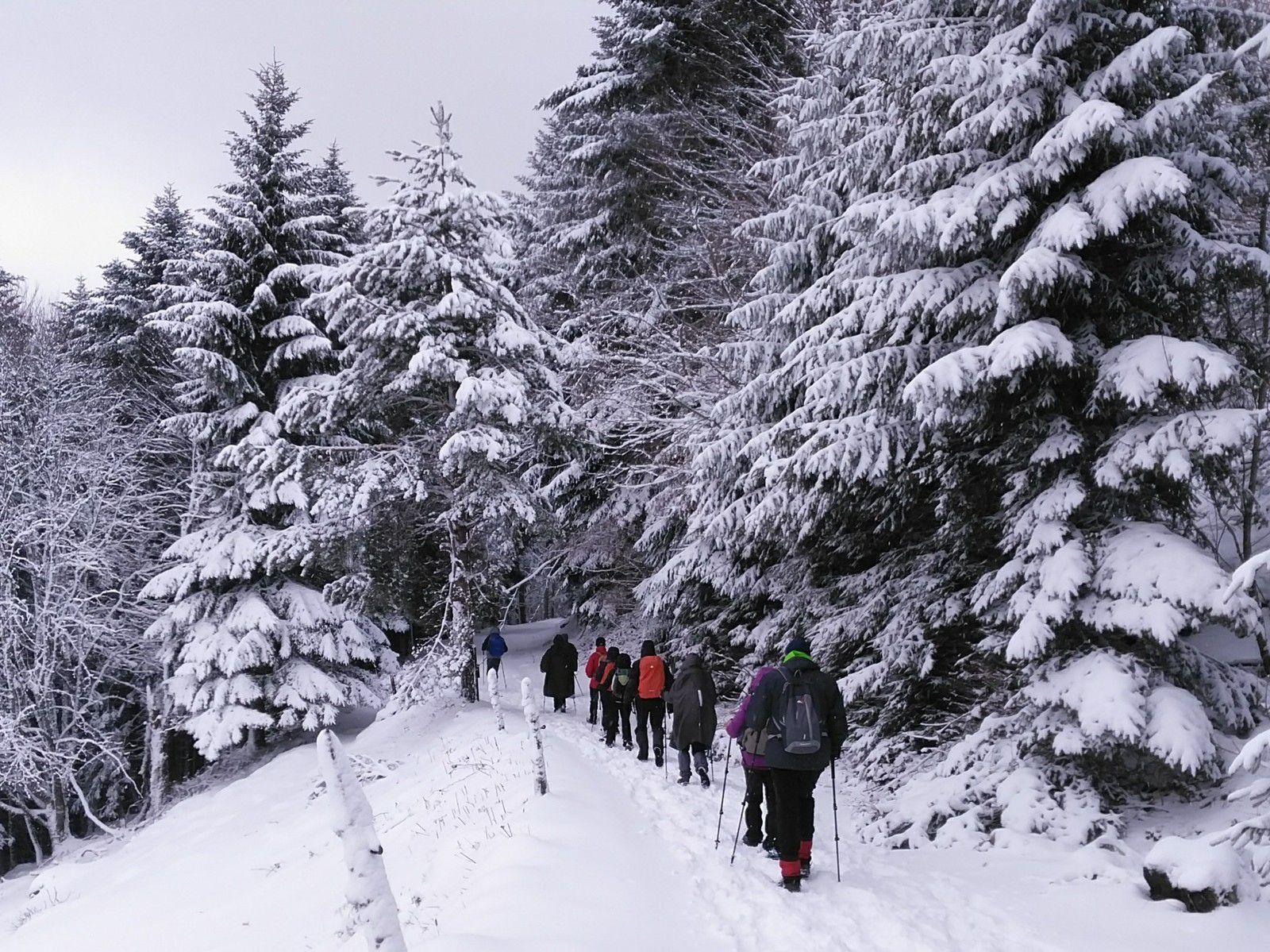 A admirer sans modération, le Gachney sous la neige.....