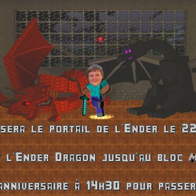 Invitation 13 ans Mini Loup : Minecraft Ender Dragon