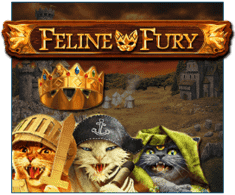 machine a sous feline Fury logiciel Play'n Go