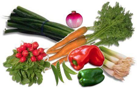 INDEX Légumes