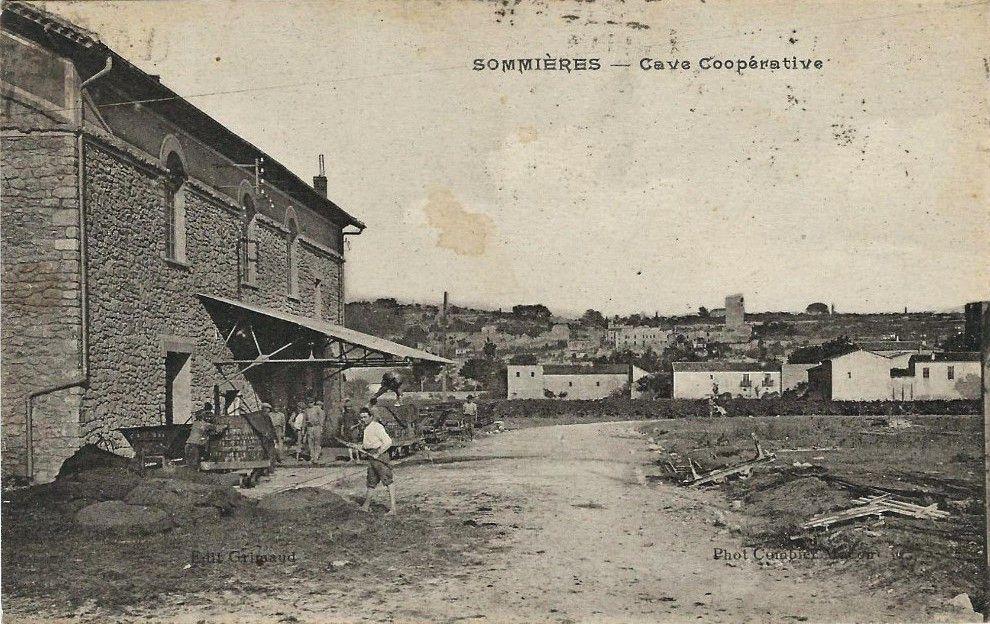 Cave coopérative de Sommières (Gard)