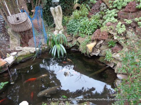 Mon petit jardin Le Clos fleuri en janvier 2020 .....