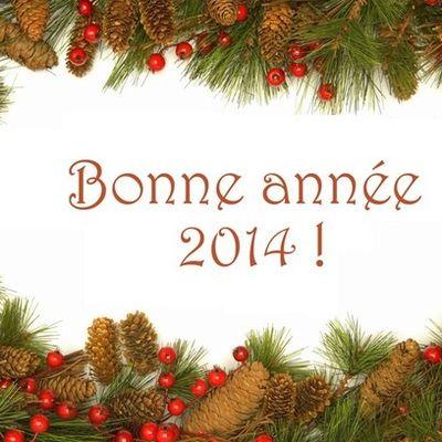 Bonne Année 2014 - Blog du templier