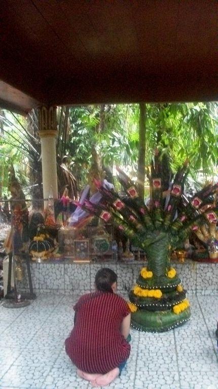 Thaïlande : PHOTOS DE WAT KAM CHANOT
