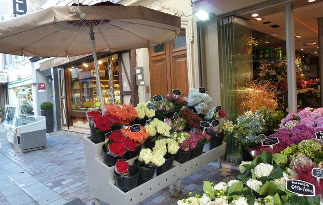 Promenades à Paris Septembre et Octobre 2014.