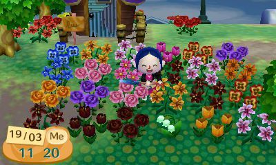 Débuter dans Animal Crossing New Leaf - soluce